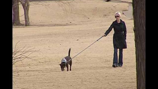 Residents Unhappy With Lubbock Leash Laws