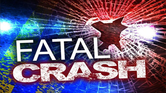 New Mexico State Police Investigate Fatal Crash in Lea County Sunday Morning