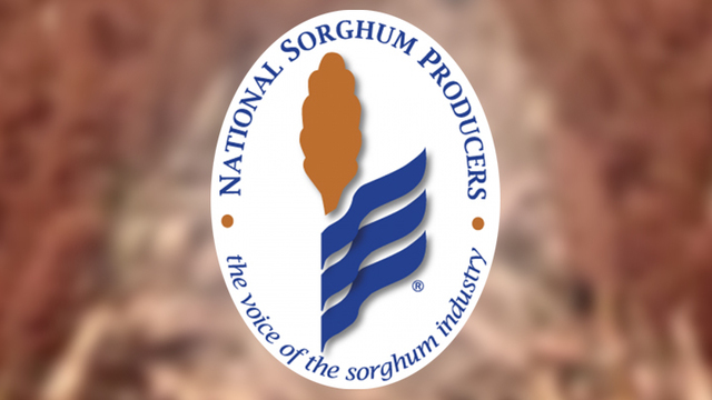 National Sorghum Producers Hires New Communication Coordinator