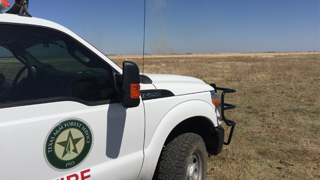 State Dispatches Resources to Fight Wildfire in Hale County Sunday
