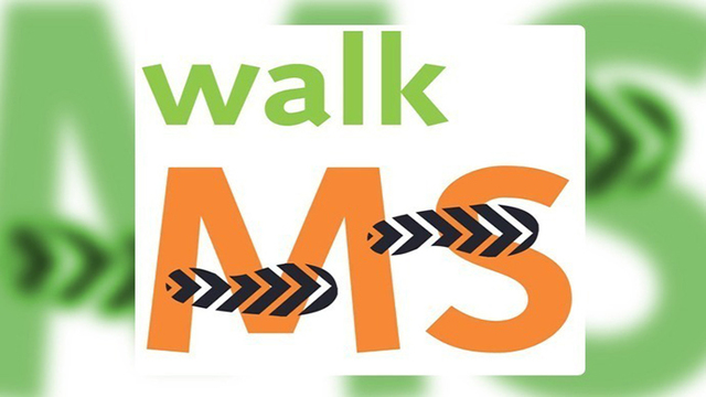 Hundreds Walk in Rain For MS