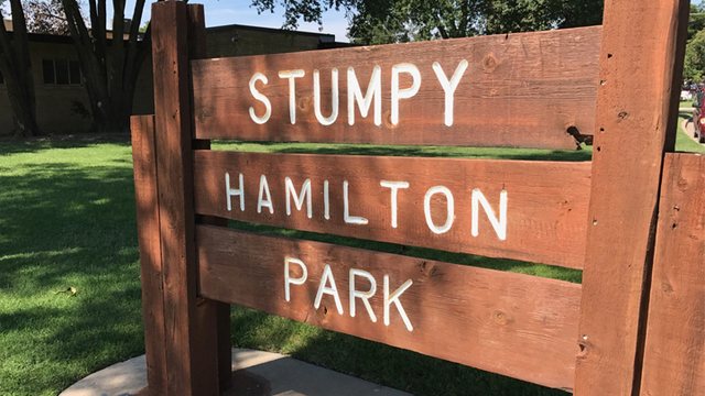 Stumpy Hamilton Park Improvements Up for City Council Vote