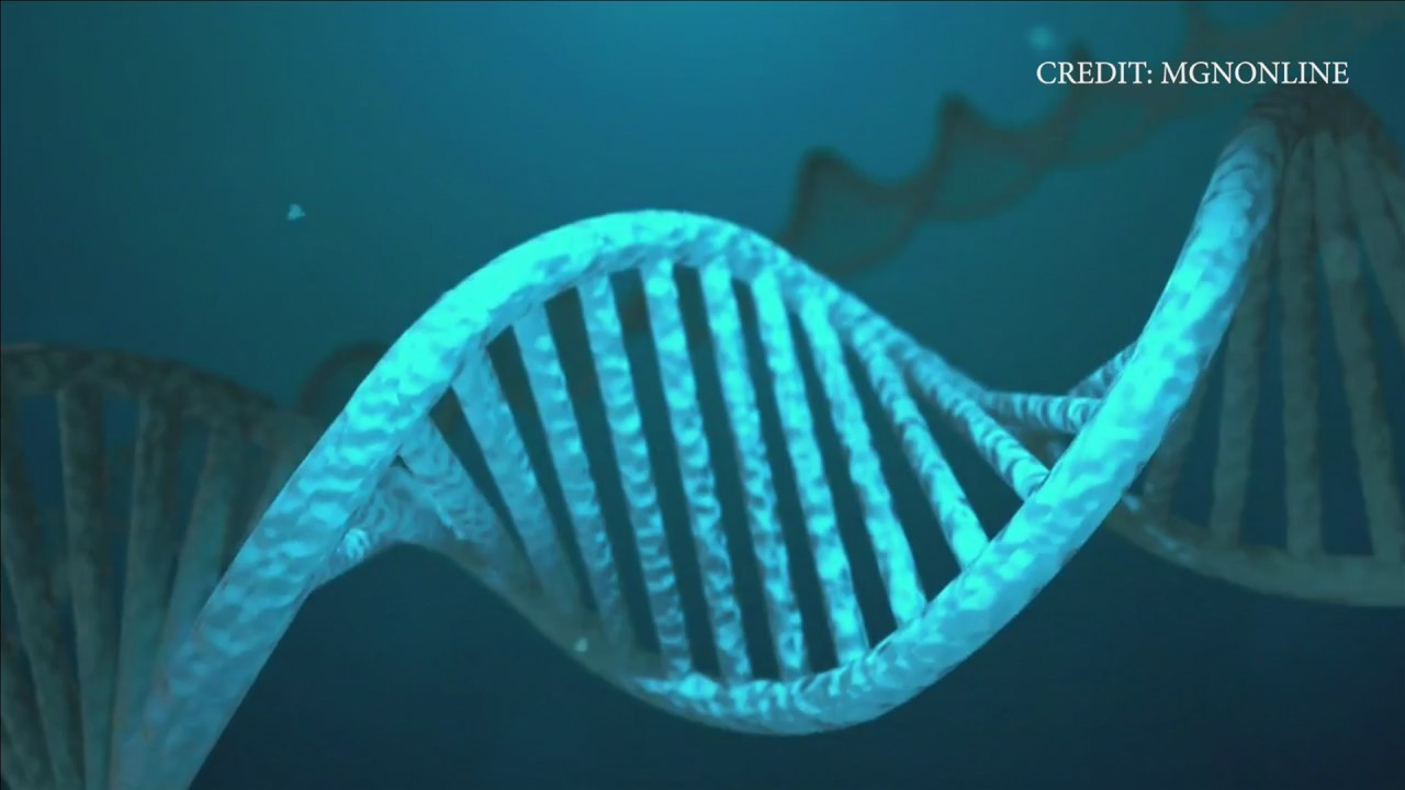 DNA Profiling Assists Law Enforcement in Over 30,000 Investigations Across Texas